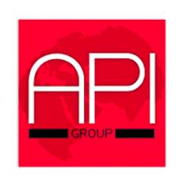 API Holding Group